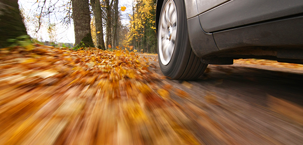 Tyres in autumn