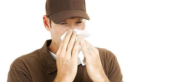 Air filter allergy