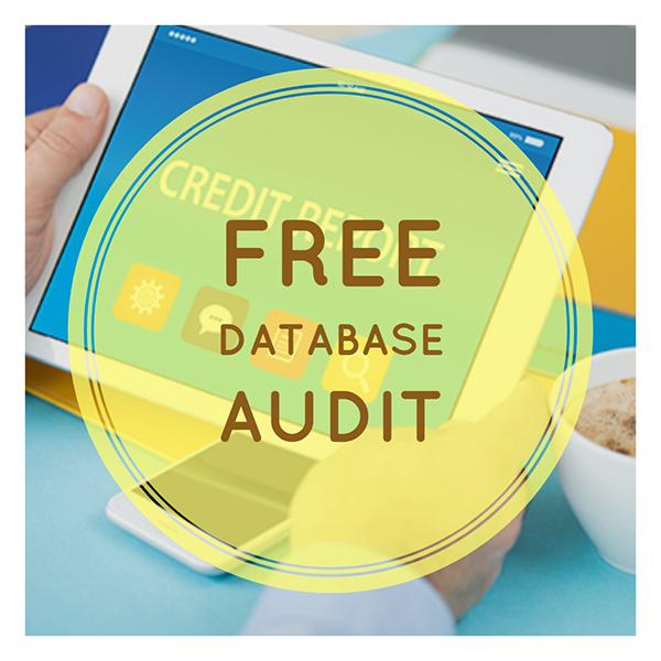 MBA Data Audit